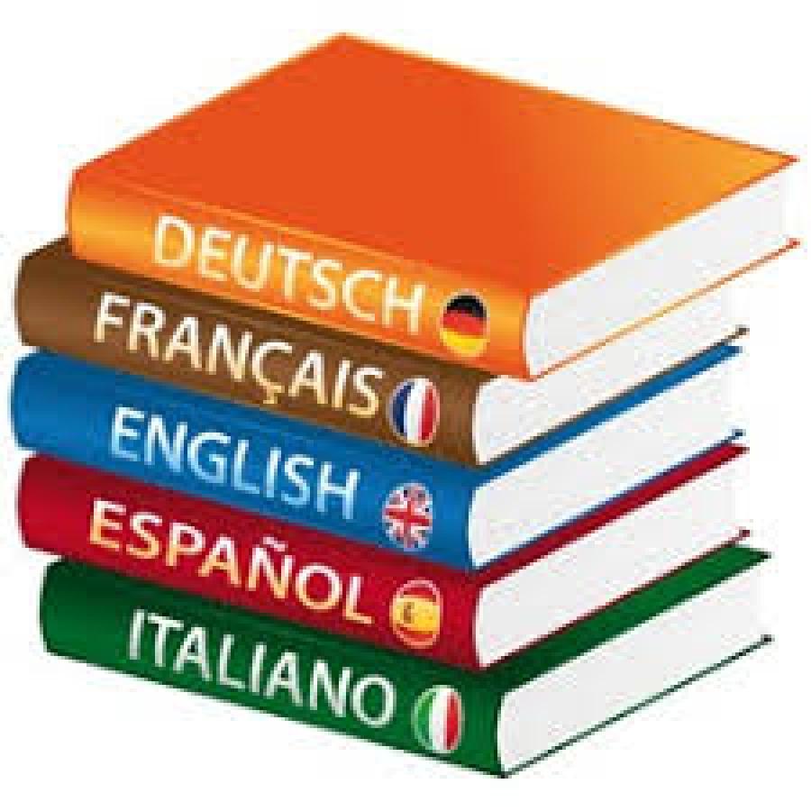 Est-ce que les adultes peuvent partir en séjour linguistique?